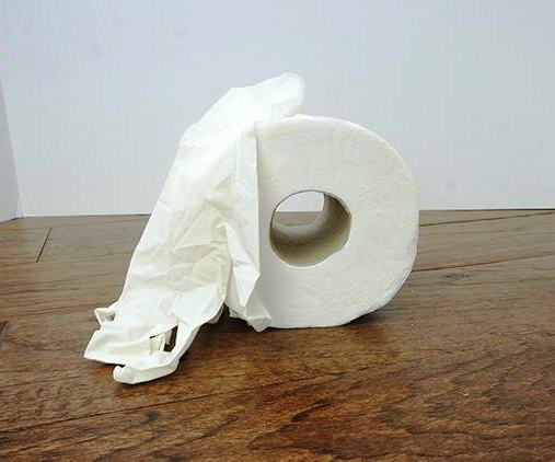 how-make-own-toilet-paper-home-coronavirus